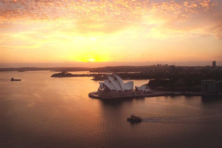 A bridge climber's view of the Opera House