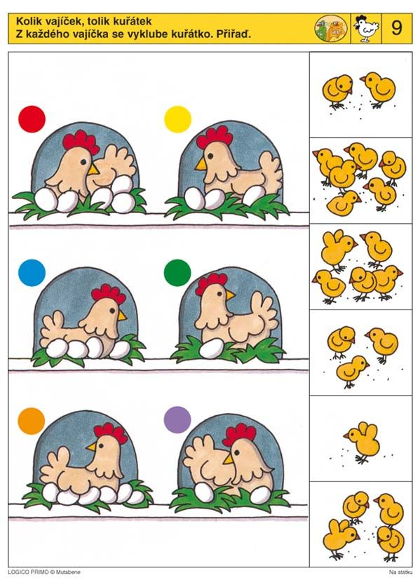 Hoeveel kuikentjes komen er uit de eieren?