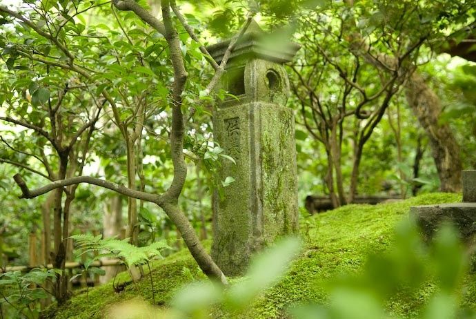 Giouji Temple Kyoto