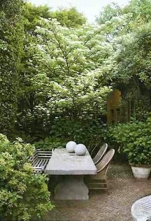 11975 Best Images About Gardens On Pinterest | Chelsea Flower Show