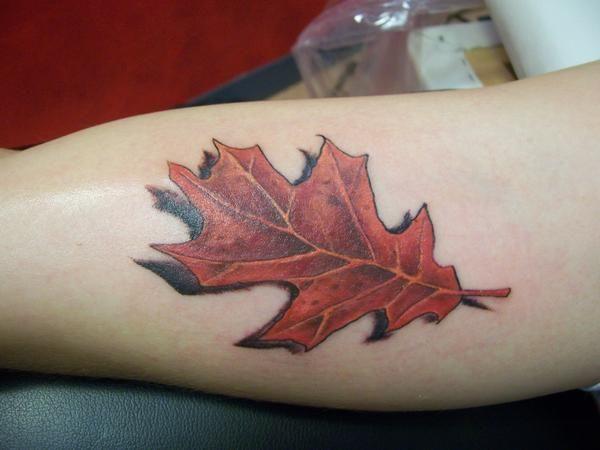 Oak Leaf Tattoo Meaning oak leaf tattoo related keywords & suggestions ...