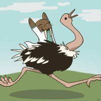 Walrus Riding an Ostrich by MultiColoredCrow