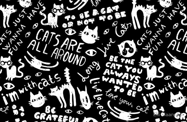 Cats Are All Around - Black