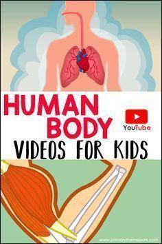Human Body Videos for Kids found on YouTube // Vídeos para niños sobre el cuerpo humano #youtube #humanbody #body #kidslesson