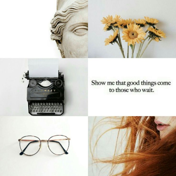 Doctor Who Companions Aesthetic ➤  Rose Tyler, Martha Jones, Donna Noble, Amy Pond, Clara Oswald & Bill Potts.    I'm a human being. Maybe not the stuff of legend but every bit as important as Time Lords, thank you.