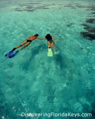Warm healing turquoise Caribbean waters of Key West make summertime snorkeling one of the best things to do on the island!