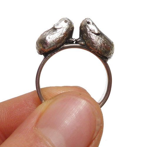 Guinea pig ring. This one has my name written all over it.