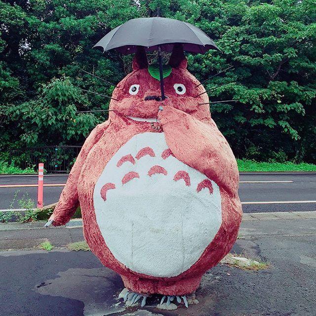 【astoroboy1357】さんのInstagramをピンしています。 《三重県御浜町〜うどん「大石屋」の大トトロ Mieken mihamacho〜udon「oishiya」  O-ttoro 毎日雨ばかり😲「晴れの日」を探すには彼しかイナイね ⁈ 〜猫バスよんでね🤗 😘 国道42号線沿いに立ってます😆 🌬Totoro will never fail you🌬🌬💨 #御浜町 #三重県 #うどん #大石屋 #となりのトトロ #めい #さつき #ジブリの立体建造物展  #宮崎駿 #アニメ #古民家 #小説家 #夢 #車  #雨 #風 #森 #井戸水 #おばあちゃん #妖怪 #恋 #かんた #ぽけもんgo #女の子 #小学生  #ランドセル#かわいい #飛ぶ》
