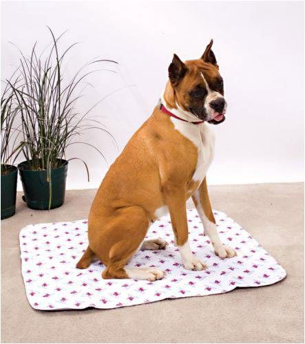 Incontinence Pads For Dogs Pets At Home