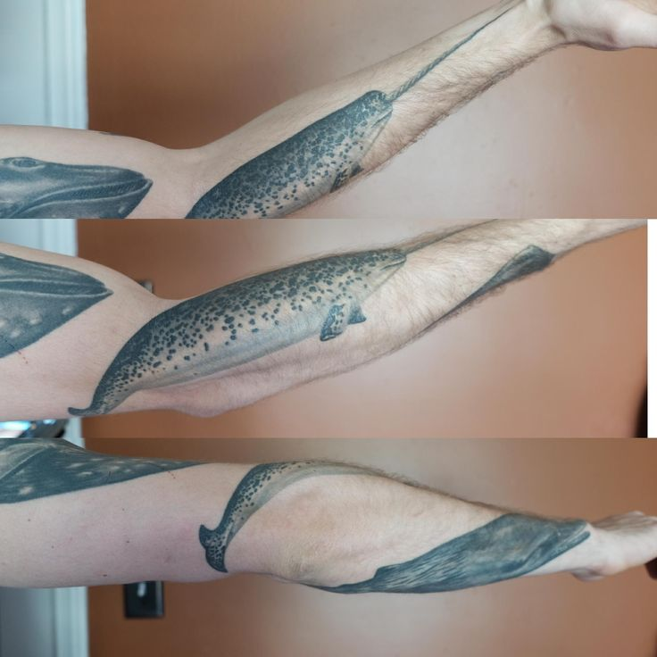 Narwhal. CARLOS CHAVEZ. Kokopelli Tattoo Studio. Ecuador.