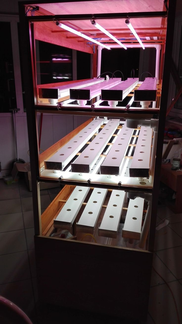 Hydroponic automated self Growing unit for indoor. by Hydroser
