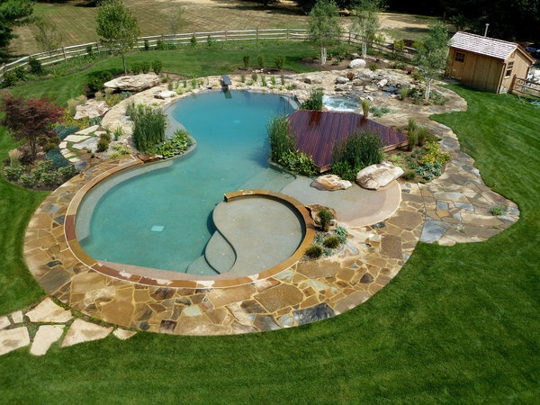 288 best images about amazing backyards pools luxury for Natural pools arizona