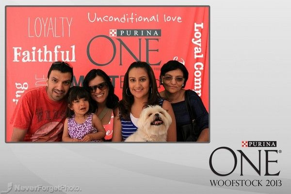 1 photo in a 4x6 Layout strip- Used by Purina One  #woofstock #doglovers #photobooth