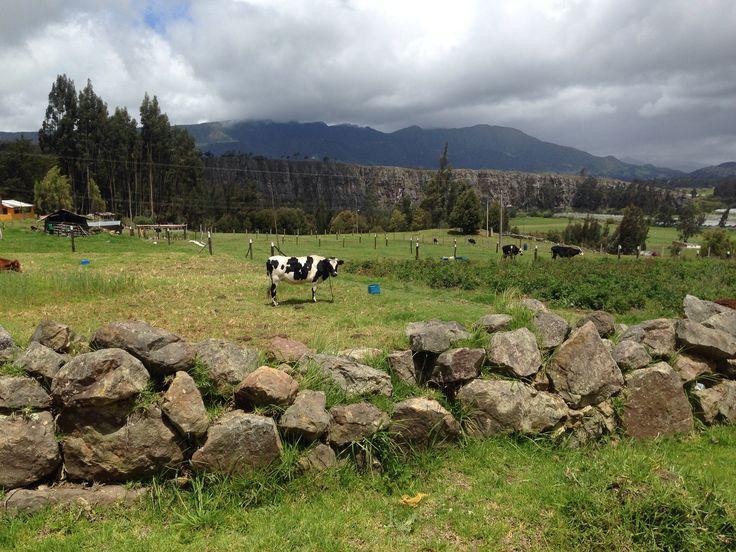 Rocas de Suesca, parque de escalada a una hora de Bogotá