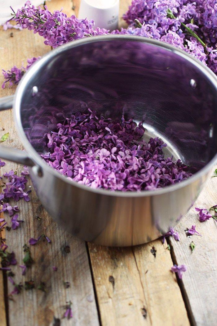 Fliederblütensirup - Lilac Syrup | Das Knusperstübchen