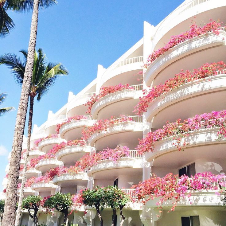 Places to stay:  Fairmont Kea Lani Maui: Even if you can just afford it for a few nights, I recommend it. Sitting at the swim-up bar all day and playing cards with Justin is one of my favorite things to do!  Days Inn Maui Oceanfront: If money is tight, I highly recommend this hotel. It's where we stayed before we bought the condo, and in my opinion, if you are good with your money, it's the best place to stay on the island. It is on the best beach on the island. It's roughly $100 a night and…