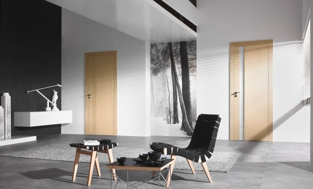 holz innent ren glaseinsatz schmal vertikal i n t e r i o r innent ren fenster und t ren. Black Bedroom Furniture Sets. Home Design Ideas