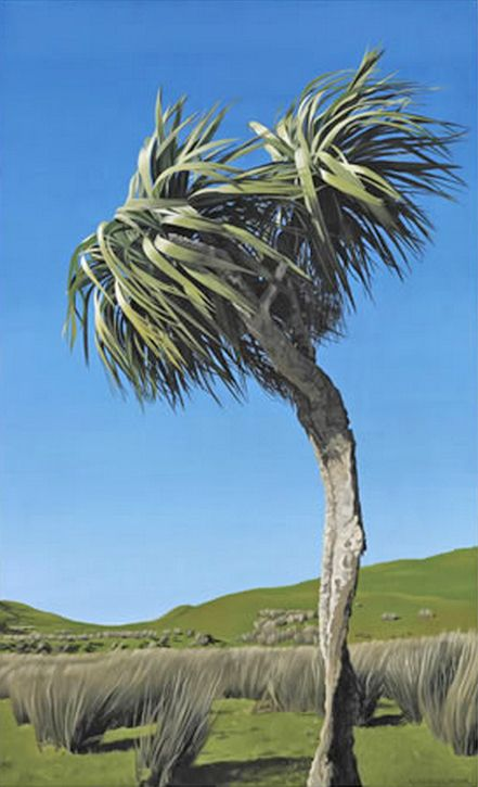 Hold onto your Hat! Cabbage tree blowing in the wind -by Alison Gilmour. www.imagevault.co.nz