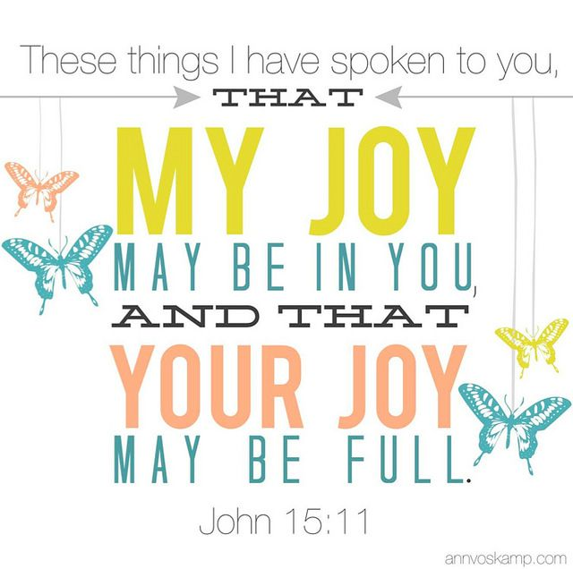 Screen Shot 2014-06-03 at 9.21.14 PM John 15:11