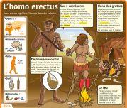 L'homo erectus - Le Petit Quotidien, le seul site d'information quotidienne pour les 6 - 10 ans !