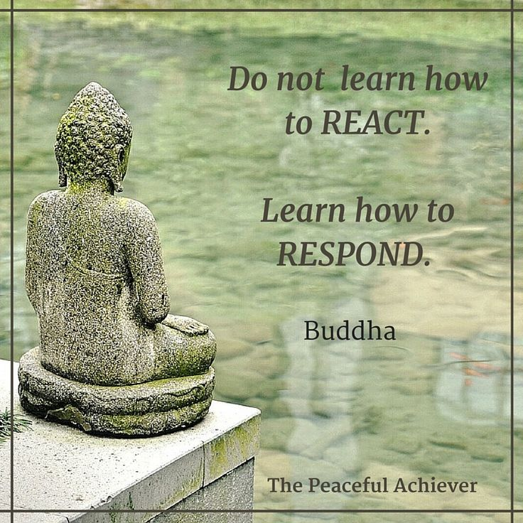 "Wisdom Quote ~ ""Do not learn how to react. Learn how to respond."" Buddha                                                                                                                                                                                 More"