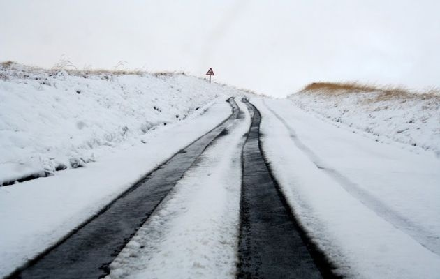 Snow in the Golden Gate Clarens area