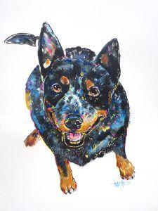 Aussie Cattle Dog Tracey Keller Pet Portrait