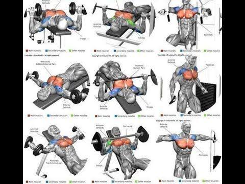 25 meilleurs exercices Entraînement complet du corps, partie 1 | Vidéo & Guid… | Exercice ...
