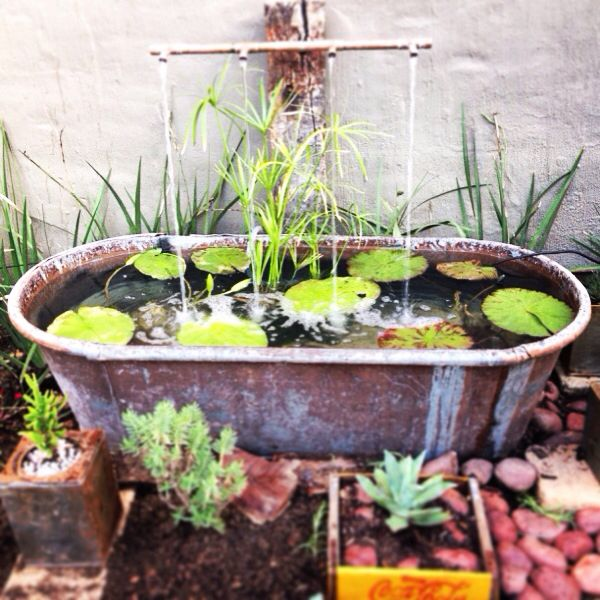 Old rusted tin bath mended and turned it into a water for Garden pool from bathtub