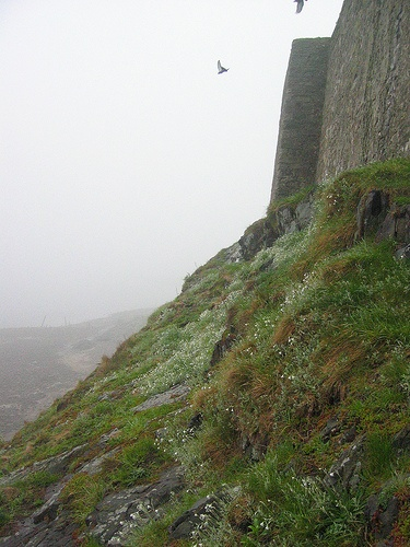 Lindisfarne Castle - E. L. Lutyens