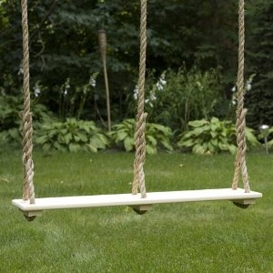 Double Adult Tree Swing