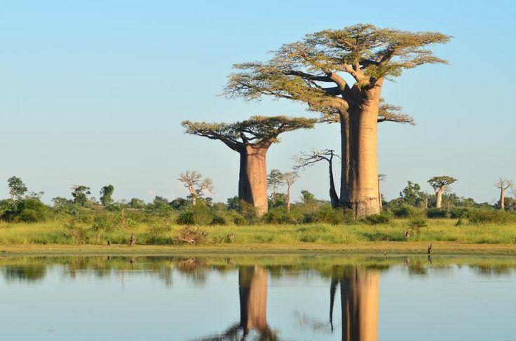 Madagascar 2016: Best of Madagascar Tourism - TripAdvisor