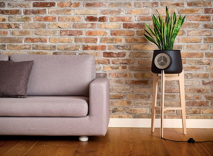 Clairy: The Natural Indoor Air Purifier - Core77