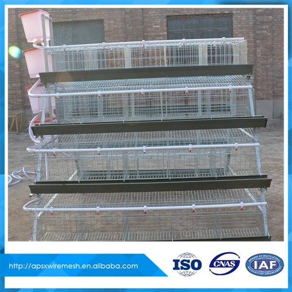A Type Layer Chicken Battery Cages for Poultry Equipment