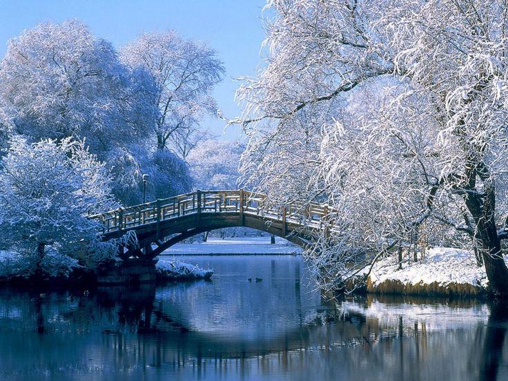 Puente invernal 800x600