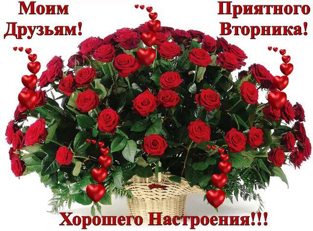 gif_1480415102.gif (640×472)