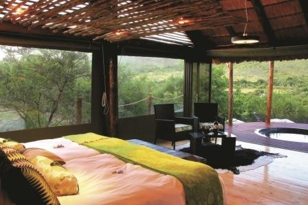 Shamwari Game reserve South Africa