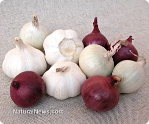 Eat garlic and onions every day for optimum heart health, immunity, cancer prevention << natural news