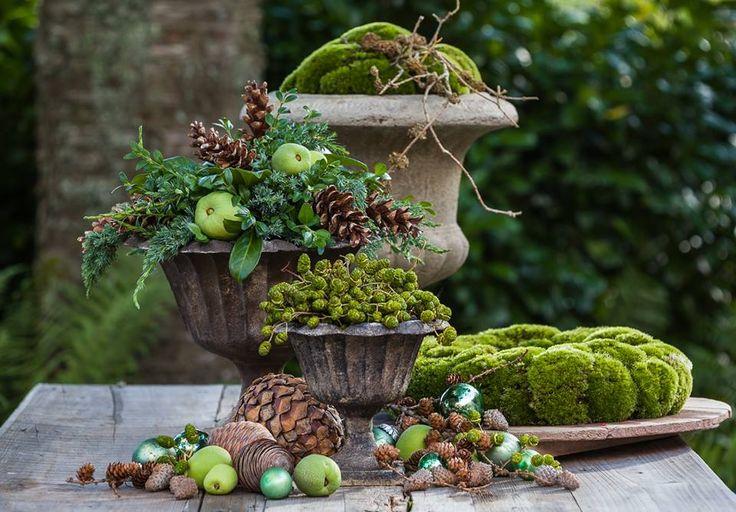 Winter arrangement in pots and urns with moss. Design by Claus Pedersen - Munkhus, Denmark.