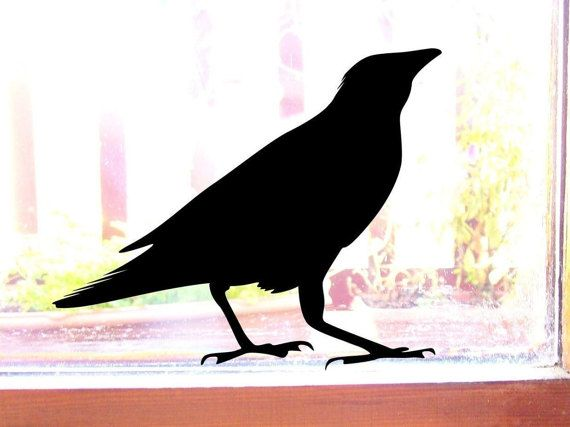 Best Garden Bird Gifts Images On Pinterest Garden Birds - Window decals for birds