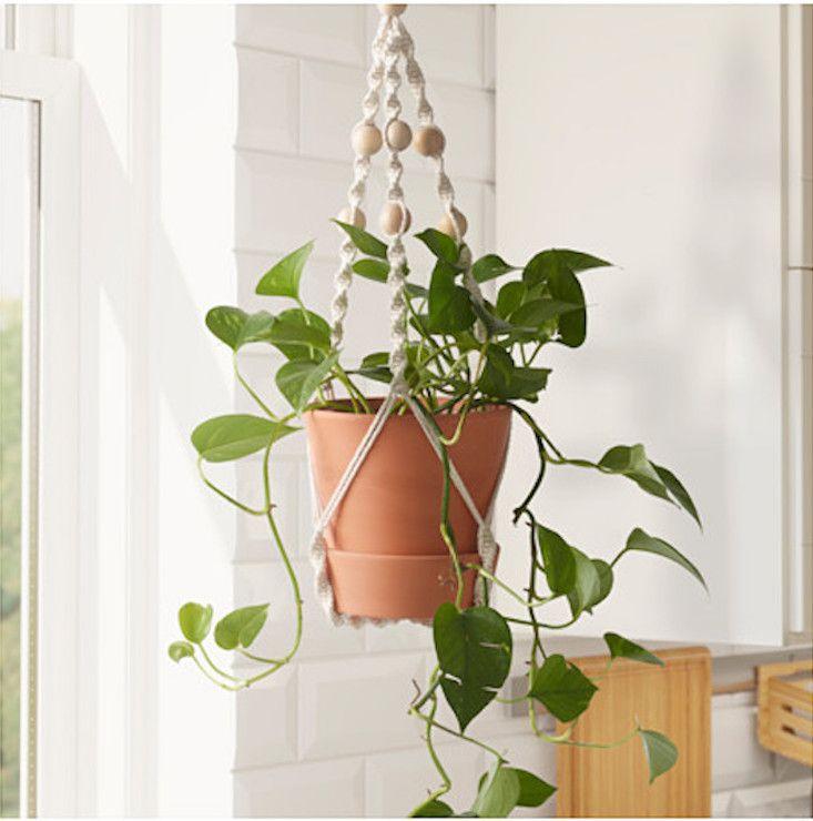 IKEA_anvandbar-hanging-plant-holder-gardenista