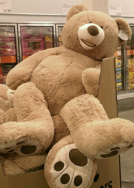 Big Teddy Bear. Saw these at Costco in July, they were HUGE, and so plush. I think if I held one up, it would have been as tall as me.