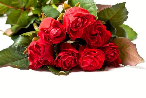 1895360-948097-red-rose-bouquet-isolated-on-white-background.jpg (480×324)