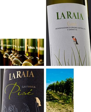 Il vino Gavi del Piemonte, bio. Anche questo nei cesti di portanatura.it http://www.ilpastonudo.it/associazione/i-cesti-consapevoli-del-2013