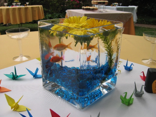 Fish centerpiece wedding ideas pinterest the o 39 jays for Fish wedding centerpieces