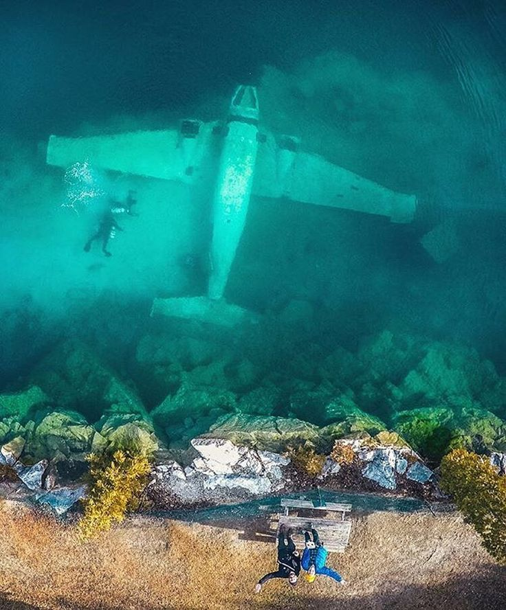 This  is 35ft underwater in Morrison Quarry Canada | PC: @szetoszeto  ten trees are planted for every item purchased: http://ift.tt/1gvwPkT  #nature #natureblog #inspiration #inspire #inspiring #earth #explore #outdoors #environmental #Environment #enviro #trave #naturelover #naturelovers #natureonly #natureseekers #natureporn #earthporn #naturehippys #hippy #naturewalk #photograpghy #cleanair #naturephoto #naturephotography #02 #natureshooters #naturevalley #natureshoot #naturel #tentree