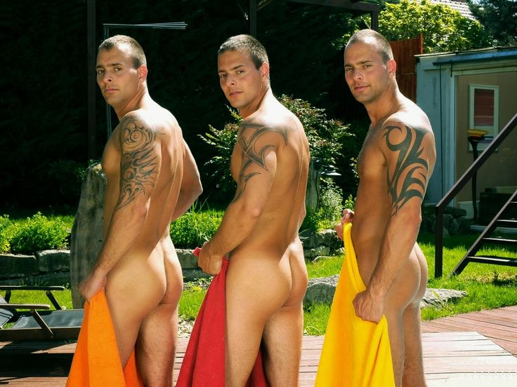 Rocco poolside orgy