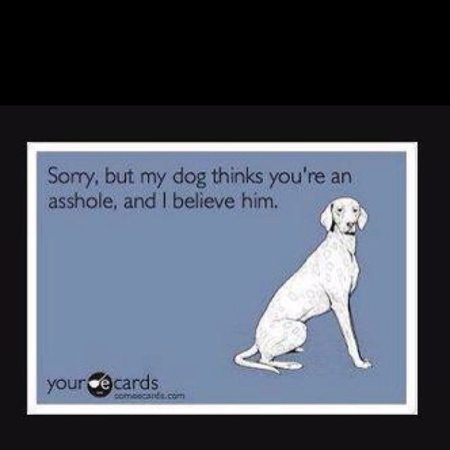 Very true!: Giggles Time, Humor, Pets Animal, Ecards, Things, Dogs I