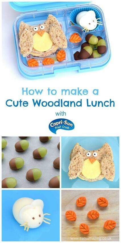 How to make a woodland themed packed lunch – fun and healthy kids lunch idea for a special occasion from Eats Amazing UK and Capri-Fun Fruit Crush