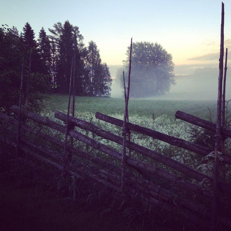 Underbara svenska sommarnatt! Visst känns doft av blommor och natt genom bilden...
